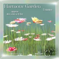 Harmony Garden Daisies Ad