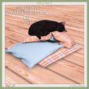 {Why Not _} Bracklinn Fall Sleeping Cat GIFT